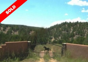 New Mexico, ,Vacant Land,Sold,1016