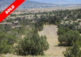 New Mexico, ,Vacant Land,Sold,1017