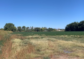 Castillo Rd, Jarales, New Mexico 87023, ,Vacant Land,For Sale,Castillo Rd,1084
